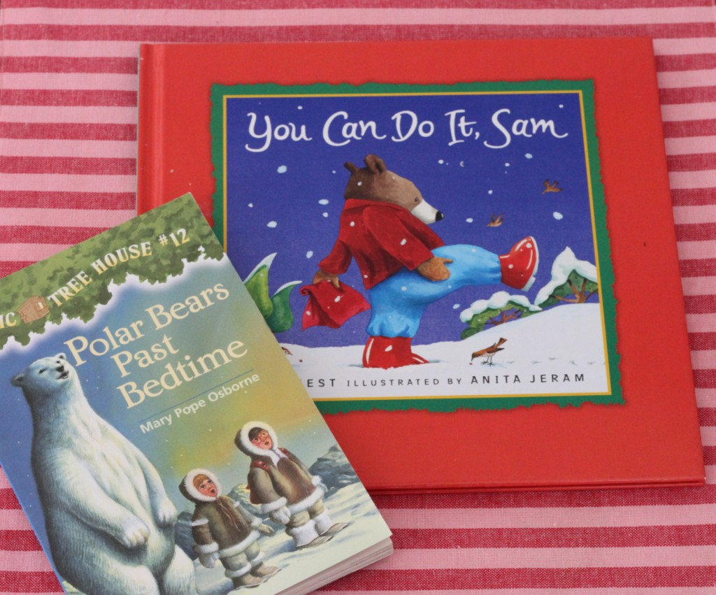 Snow Day Books Mirabelle Creations