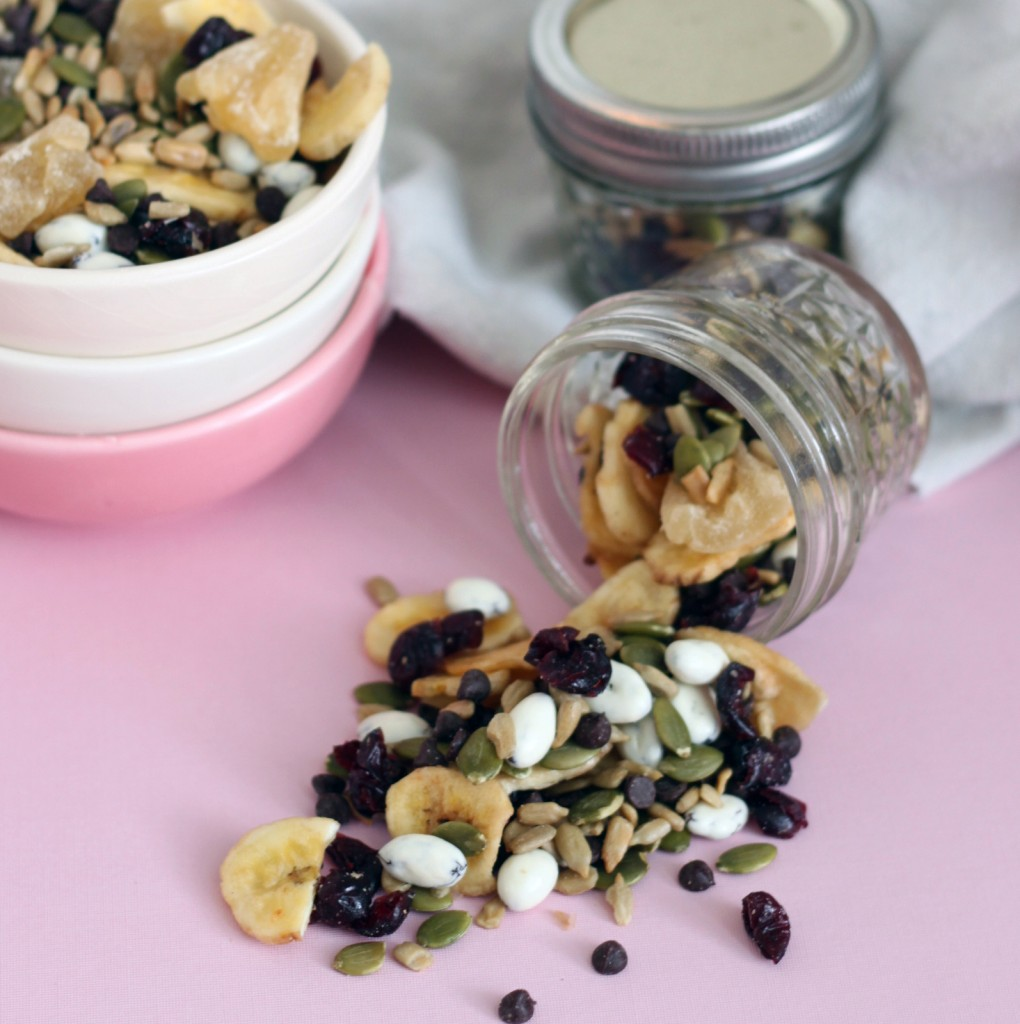 nut-free-trail-mix-recipe-mirabelle-creations-5